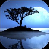 水面反射させるアプリ「Reflection」で写真を幻想的に♪