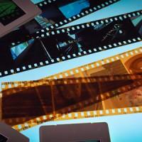 ネガフィルム・ポジフィルムの良いとこを比べてみました