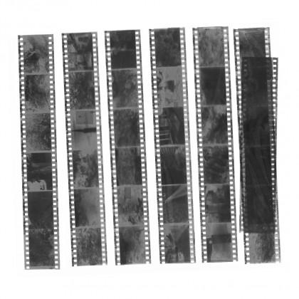 モノクロフィルム