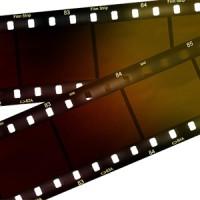 ネガフィルムのカビや色褪せに注意!早めのデジタル化が必要です