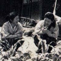 昭和一桁生まれの両親。東北の小さな村の暮らしと生活感が蘇りました。