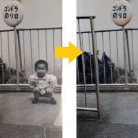 アルバム写真を手軽にデジタル化【Photomyne(フォトマイン)】徹底ガイド!